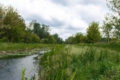 Mała rzeka z zieloną trawą Zdjęcia Stock