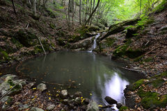 Mała siklawa i jezioro na Borzesti lejemy się iść do Borzesti wąwozu Zdjęcie Stock