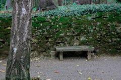 Mała Spokojna ławka w Przyschniętym ogródzie Zdjęcia Royalty Free