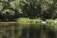Mała tama po środku lasu z dwa małymi siklawami zdjęcie royalty free