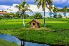 Mała trawy chałupa Fotografia Stock