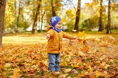Mała urocza chłopiec w żółtej kurtce rzuca up liście klonowych w a zdjęcie royalty free