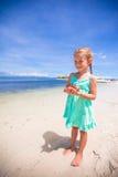 Mała urocza dziewczyna z rozgwiazdą w rękach przy obrazy royalty free