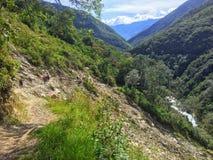 Mała wijąca droga przez lasów Peru na sposobie mac obraz royalty free