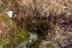 Mała wiosna i kałuża w lesie z śmieci w wodzie, Turystyczny zanieczyszczenie zdjęcia royalty free