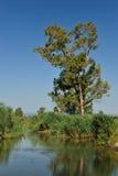 mała wsi rzeka Zdjęcie Royalty Free
