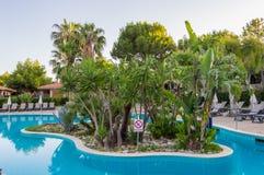 Mała wyspa drzewko palmowe po środku basenu przy wschodu słońca dowcipem Fotografia Royalty Free
