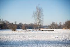 Mała wyspa kłama po środku zamarzniętego jeziora zakrywającego z śniegiem Zdjęcia Stock
