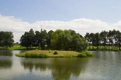 Mała wyspa po środku jeziora Obraz Stock