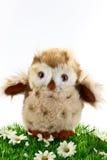 Mała zabawkarska sowa Zdjęcia Stock