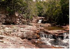 Mała zatoczka i siklawa w tropikalnym lesie obraz royalty free