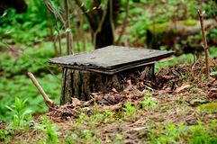 Mała zawdzięczający sobie ławka od lasowego karcza Obrazy Stock