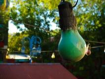 Mała zielona żarówka Fotografia Stock
