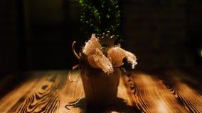 Mała zielona choinka w garnku na ciemnym tle Rama W górę dekoracyjnej choinki jest w torbie na drewnianym zdjęcie wideo