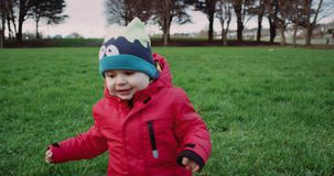 Małe berbeć chłopiec próby chodzić Trawa w parku swobodny ruch zdjęcie wideo