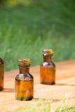 Małe brown butelki dalej booden deskę i trawy Obraz Royalty Free