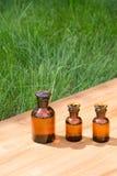 Małe brown butelki dalej booden deskę i trawy Obrazy Stock