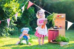 Małe dzieci bawić się z zabawkarską kuchnią w ogródzie Obrazy Royalty Free