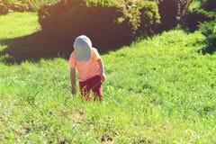 Małe dziecko chwytający insekty w ogródzie zdjęcia stock