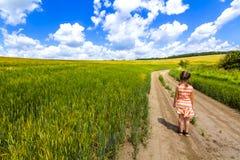 Małe dziecko dziewczyna chodzi samotnie na lato drodze gruntowej w zielonej uprawy polu zdjęcia royalty free