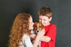Małe dziecko obejmuje ślicznej szczeniak dźwigarki Russell Zdjęcie Royalty Free