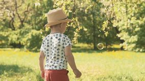 Małe dziecko w kapeluszowych łapanie bąblach Chłopiec bawić się outside na letnim dniu zbiory wideo