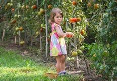 Małe dziewczynki Zdjęcia Stock