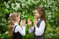 Małe dziewczynki w eleganckich mundurkach szkolnych bawić się outdoors w kwitnie jabłko parku fotografia stock