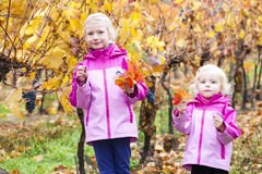 Małe dziewczynki z winogronem w jesieni Zdjęcie Royalty Free