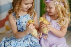 Małe piękne małe dziewczynki trzyma siostry w rękach du Zdjęcia Royalty Free