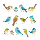 małe ptaki royalty ilustracja