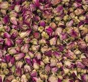 małe suche róże Zdjęcia Stock
