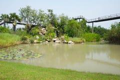 Małego jeziora ogródu tło publicznie fotografia stock