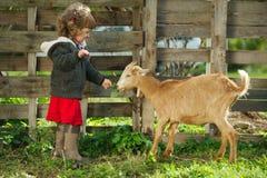 Małej dziewczynki żywieniowa kózka w ogródzie Obrazy Royalty Free
