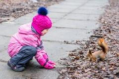 Małej dziewczynki żywieniowa wiewiórka z dokrętkami w lesie zdjęcie stock