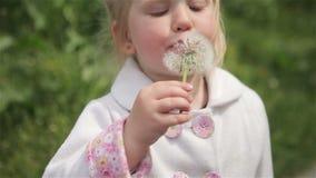 Małej dziewczynki blond dmuchanie dandelion zdjęcie wideo