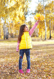 Małej dziewczynki dziecko z żółtymi klonowymi liśćmi bawić się w jesieni Obrazy Stock
