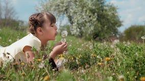 Małej Dziewczynki 9-10 lat Dmucha Na Dandelion zdjęcie wideo