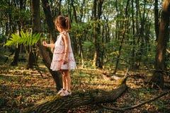 Małej dziewczynki pozycja w lesie z paprociami zdjęcie stock