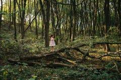 Małej dziewczynki pozycja w lesie z paprociami fotografia royalty free