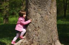 Małej dziewczynki wspinaczkowy drzewo w parku Fotografia Stock