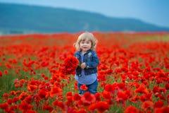Małej dziewczynki zrywania maczki w śródpolnym mała dziewczynka maczka polu, cajgi Chować w kwiatu piękna ślicznym dziecku zdjęcie royalty free