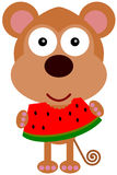 Małpa arbuz Obraz Royalty Free