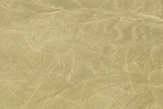 Małpa, Nazca linie, Peru obraz royalty free