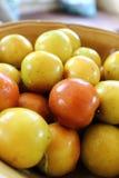 Małpia jabłczana owoc Zdjęcie Stock