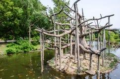 Małpia wyspa zdjęcie royalty free