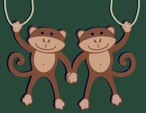 małpy dwa Zdjęcia Royalty Free