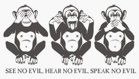 małpy mądre trzy Fotografia Royalty Free