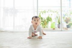 Mały ładny dziewczynki czołganie na podłoga w domu Obrazy Royalty Free