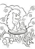 Mały śliczny jeż siedzi na fiszorku Obrazy Royalty Free